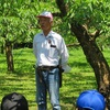 6月10日 6年 桃の摘果作業体験