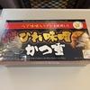 【駅弁レビュー】手軽にお腹を満たしたい時にオススメ&JR名古屋駅で購入できる「ひれ味噌かつ重」