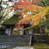 法然院 山門の茅葺と紅葉のコントラストが美しい(Kyoto,Honenin)
