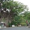 屋久島飲食店盛衰現代記 ⑥ 尾之間・小島・平内・湯泊・中間・栗生