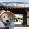 京都ゆるり旅④大覚寺