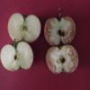 「いじめ」のもたらす影響をリンゴを使って子どもたちに教えた授業がSNSで「素晴らしい教え方だ」と話題!