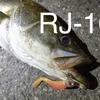 コアマン「RJ-10」を使ってみた第一印象。RJ-7と3gの差はすごい!