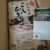 【ふるさと納税】米どころ新潟から、お米が10kg届きました!