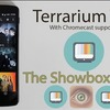 The Showbox Killer - Why Terrarium is better than Showbox?