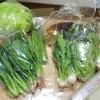 丹波 婦木農場 兵庫丹波市  おとりよせ  野菜  平飼い卵  おうちで楽しむ「食」