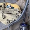 #愛犬ラブは、ソファー好きで掃除機嫌い⁈(削除ブログ復活⑨)