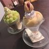 【奈良】趣を感じる古民家カフェ!奈良の人気店 cafe ことだまさんで奈良カフェタイム!