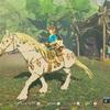 『ゼルダの伝説 ブレス オブ ザ ワイルド』王家の白馬を捕まえたら能力値がすごかったです!