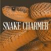 【SEDUCE JUICE・リキッド】Snake Charmer スネークチャーマー を買いました