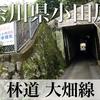 【動画】神奈川県小田原市 林道 大畑線