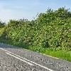 アイルランドで初めてのヒッチハイク体験