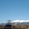 雪景色の御嶽山(御岳山)・2021年3月18日②