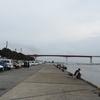 花暮岸壁でのんびり海釣りをしてみた 三浦半島・三崎漁港・城ヶ島大橋周辺のポイント