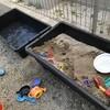 トロ舟で庭に蓋つき砂場をDIYする方法。
