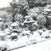 今年一番の寒波、そしてまあまあの大雪!