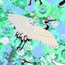 NGT48をみるブログ「三鶴の黄昏と黎明」