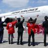JAL、5月5日に男性CAのみで「こいのぼりフライト」運航(今年で9回目)