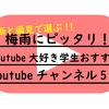 【梅雨にピッタリ】Youtube漬け男子大学生おすすめYoutubeチャンネル5選