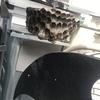 豊橋市で室外機の中に出来たアシナガバチの巣を駆除してきました!