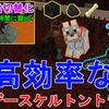 【マイクラ1.16】超高効率なウィザースケルトントラップ 作り方解説!手動自動切替化!Minecraft High Efficient AFK Wither Skeleton Farm【マインクラフト】