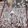 足冷えてないですか?今年の冬は股引(ももひき)、いやヒートテックパンツで快適に過ごそう!