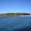 【ケアンズ旅行】グリーン島ディスカバリーツアー・マリンランドメラネシアを楽しむ。