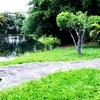 ニュグアス公園 Parque Ñu Guazu