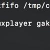 RaspberryPi3 テレビリモコンから omxplayer を操作する(mkfifo /tmp/cmd → omxp-with-cec.sh)