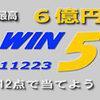 6月3日 WIN5 安田記念GⅠ
