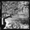 屈斜路湖にある和琴半島を歩く!の巻