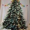 片付け簡単 大人のためのクリスマスツリー