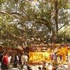 シリーズ「なぜ、仏教がインドで根付かなかったのか?8(最終回)~統合様式と宗教の関係