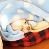 毛布からのカミカミ