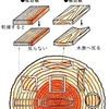 木材の豆知識【パート4】~これを知らないと無垢材を選ぶ時に損をする~