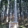 木工×針葉樹資源 ①針葉樹を使うということ