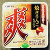 ロッテ 爽 焼きりんご&バニラ