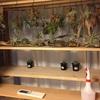 出窓に自作した木製の棚を改造。