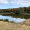 今池( 三重県伊賀)