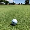 Play it as it lies. あるがままに打つ ゴルフの神髄をもう一度見直しました…