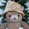 ウィルキンソンのジンジャーエールを買ったら新しいお帽子ができたよ!
