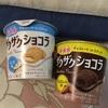 おやつカンパニー:ざくざくショコラ(バニラ、チョコレート)