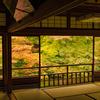 【京都】京都の紅葉を楽しむ2days(2015年)