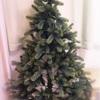 クリスマスツリーの記事ふたたび