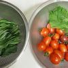 ゴールデンウィークはミニトマト「アイコ」が売れ切れ!