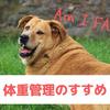 愛犬の体重管理のすすめ