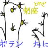 トゲのある多肉植物はサボテンに分類されるのか