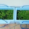 メダカの冬支度をどうするか(^^)発泡スチロールの箱を買いました。アマゾンフロッグピットが増えすぎてる(^^)