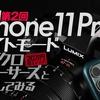 第2回 iPhone 11 Proのナイトモードをマイクロフォーサーズ20万円超えレンズと比較してみる