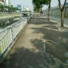 ハノイ 水質汚染がきつい・・・。
